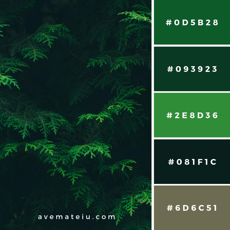 New Color Pallete on avemateiu.com: Color Palette 145 🎨 • • • #avemateiucolors #avemateiu #love #design #photos #designinspiration #designer #graphicdesign #colorinspiration #colors #instaphoto #colorpalette #moodboard #creative #instaart #colorgrading #brandidentity #artistsoninstagram #artwork #inspirationoftheday #fineart #branding #succes #beautiful #instadaily #bestoftheday #photooftheday #inspirational #colorful #avemateiudesign