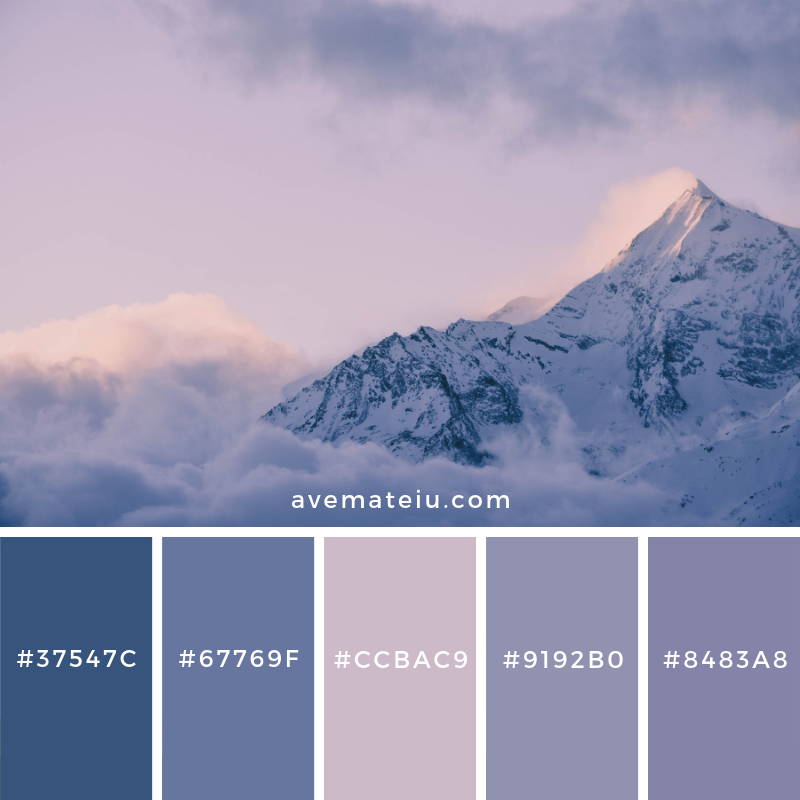 New Color Pallete on avemateiu.com: Color Palette 146 🎨 • • • #avemateiucolors #avemateiu #love #design #photos #designinspiration #designer #graphicdesign #colorinspiration #colors #instaphoto #colorpalette #moodboard #creative #instaart #colorgrading #brandidentity #artistsoninstagram #artwork #inspirationoftheday #fineart #branding #succes #beautiful #instadaily #bestoftheday #photooftheday #inspirational #colorful #avemateiudesign
