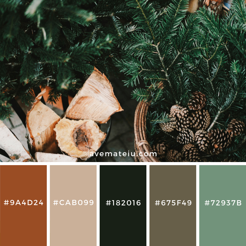 New Color Pallete on avemateiu.com: Color Palette 150 🎨 • • • #avemateiucolors #avemateiu #love #design #photos #designinspiration #designer #graphicdesign #colorinspiration #colors #instaphoto #colorpalette #moodboard #creative #instaart #colorgrading #brandidentity #artistsoninstagram #artwork #inspirationoftheday #fineart #branding #succes #beautiful #instadaily #bestoftheday #photooftheday #inspirational #colorful #avemateiudesign