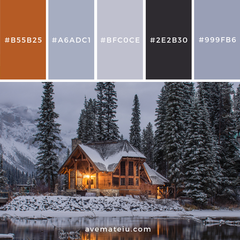 New Color Pallete on avemateiu.com: Color Palette 88 🎨 • • • #avemateiucolors #avemateiu #love #design #photos #designinspiration #designer #graphicdesign #colorinspiration #colors #instaphoto #colorpalette #moodboard #creative #instaart #colorgrading #brandidentity #artistsoninstagram #artwork #inspirationoftheday #fineart #branding #succes #beautiful #instadaily #bestoftheday #photooftheday #inspirational #colorful #avemateiudesign