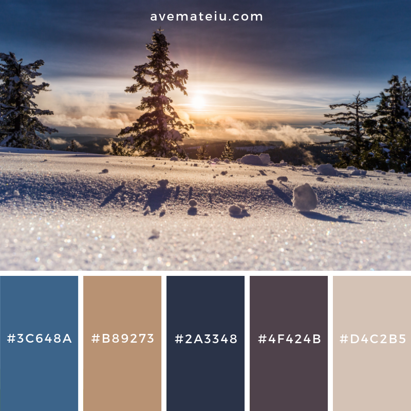 New Color Pallete on avemateiu.com: Color Palette 94 🎨 • • • #avemateiucolors #avemateiu #love #design #photos #designinspiration #designer #graphicdesign #colorinspiration #colors #instaphoto #colorpalette #moodboard #creative #instaart #colorgrading #brandidentity #artistsoninstagram #artwork #inspirationoftheday #fineart #branding #succes #beautiful #instadaily #bestoftheday #photooftheday #inspirational #colorful #avemateiudesign