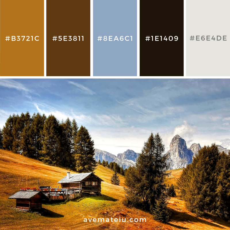 New Color Pallete on avemateiu.com: Color Palette 96 🎨 • • • #avemateiucolors #avemateiu #love #design #photos #designinspiration #designer #graphicdesign #colorinspiration #colors #instaphoto #colorpalette #moodboard #creative #instaart #colorgrading #brandidentity #artistsoninstagram #artwork #inspirationoftheday #fineart #branding #succes #beautiful #instadaily #bestoftheday #photooftheday #inspirational #colorful #avemateiudesign