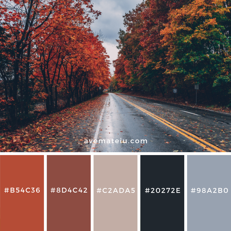 New Color Pallete on avemateiu.com: Color Palette 98 🎨 • • • #avemateiucolors #avemateiu #love #design #photos #designinspiration #designer #graphicdesign #colorinspiration #colors #instaphoto #colorpalette #moodboard #creative #instaart #colorgrading #brandidentity #artistsoninstagram #artwork #inspirationoftheday #fineart #branding #succes #beautiful #instadaily #bestoftheday #photooftheday #inspirational #colorful #avemateiudesign