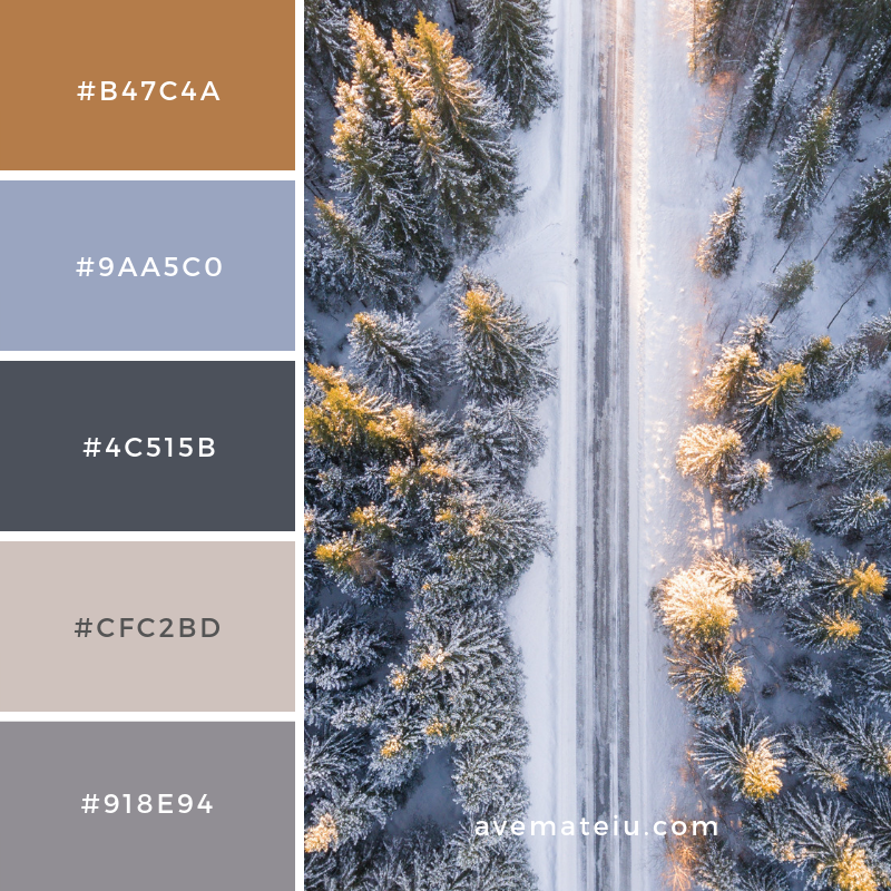New Color Pallete on avemateiu.com: Color Palette 155 🎨 • • • #avemateiucolors #avemateiu #love #design #photos #designinspiration #designer #graphicdesign #colorinspiration #colors #instaphoto #colorpalette #moodboard #creative #instaart #colorgrading #brandidentity #artistsoninstagram #artwork #inspirationoftheday #fineart #branding #succes #beautiful #instadaily #bestoftheday #photooftheday #inspirational #colorful #avemateiudesign