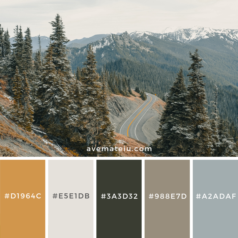 New Color Pallete on avemateiu.com: Color Palette 158 🎨 • • • #avemateiucolors #avemateiu #love #design #photos #designinspiration #designer #graphicdesign #colorinspiration #colors #instaphoto #colorpalette #moodboard #creative #instaart #colorgrading #brandidentity #artistsoninstagram #artwork #inspirationoftheday #fineart #branding #succes #beautiful #instadaily #bestoftheday #photooftheday #inspirational #colorful #avemateiudesign