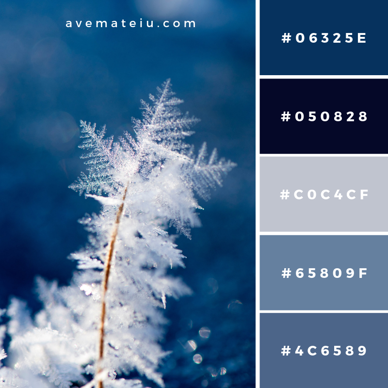 New Color Pallete on avemateiu.com: Color Palette 161 🎨 • • • #avemateiucolors #avemateiu #love #design #photos #designinspiration #designer #graphicdesign #colorinspiration #colors #instaphoto #colorpalette #moodboard #creative #instaart #colorgrading #brandidentity #artistsoninstagram #artwork #inspirationoftheday #fineart #branding #succes #beautiful #instadaily #bestoftheday #photooftheday #inspirational #colorful #avemateiudesign