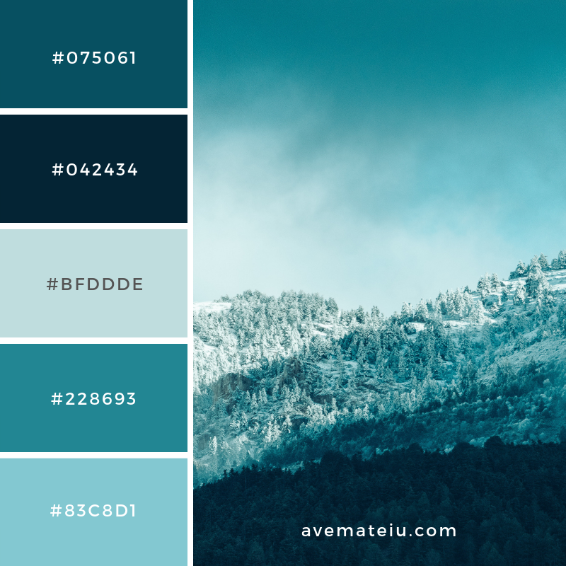 New Color Pallete on avemateiu.com: Color Palette 163 🎨 • • • #avemateiucolors #avemateiu #love #design #photos #designinspiration #designer #graphicdesign #colorinspiration #colors #instaphoto #colorpalette #moodboard #creative #instaart #colorgrading #brandidentity #artistsoninstagram #artwork #inspirationoftheday #fineart #branding #succes #beautiful #instadaily #bestoftheday #photooftheday #inspirational #colorful #avemateiudesign