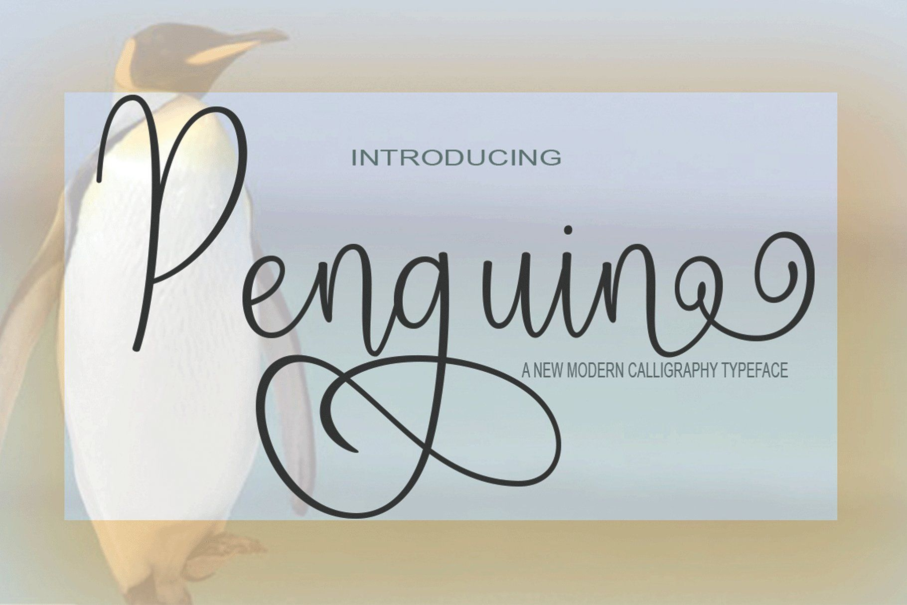 Penguin Script Buy Now $13 - Handwritten Fonts, Alphabet Fonts, Free Fonts, Script Fonts, Modern Fonts, Cursive Fonts, Design Fonts, Rustic Fonts, Calligraphy Fonts, Simple Fonts, Typography, Serif Fonts, Elegant Fonts, Professional Fonts, Beautiful Fonts https://avemateiu.com/fonts/