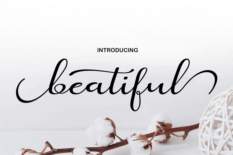 Beatiful Script - 10 New Free Calligraphy Fonts - Art, Fonts and Calligraphy, Typography, Handwritten Fonts, Alphabet Fonts, Free Fonts, Script Fonts, Modern Fonts, Cursive Fonts, Design Fonts, Rustic Fonts, Calligraphy Fonts, Simple Fonts, Serif Fonts, Elegant Fonts, Professional Fonts, Beautiful Fonts