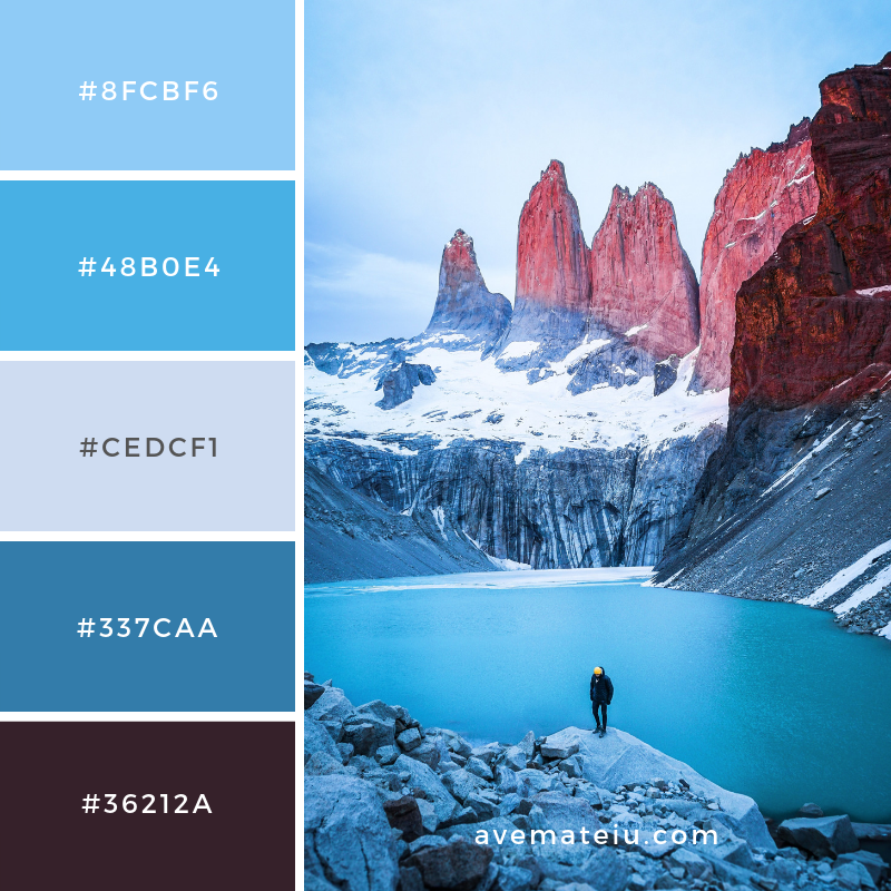 New Color Pallete 167 on avemateiu.com/color-palettes 🎨 • • • #avemateiucolors #avemateiu #love #design #photos #designinspiration #designer #graphicdesign #colorinspiration #colors #instaphoto #colorpalette #moodboard #creative #instaart #colorgrading #brandidentity #artistsoninstagram #artwork #inspirationoftheday #fineart #branding #succes #beautiful #instadaily #bestoftheday #photooftheday #inspirational #colorful #avemateiudesign