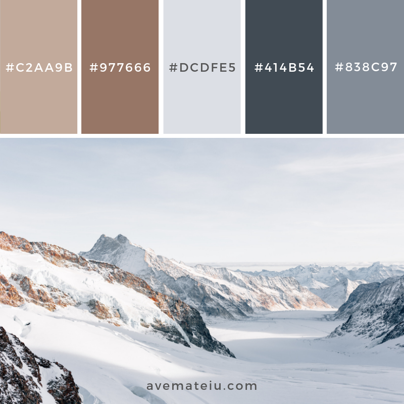 New Color Palette 168 on avemateiu.com/color-palettes 🎨 • • • #avemateiucolors #avemateiu #love #design #photos #designinspiration #designer #graphicdesign #colorinspiration #colors #instaphoto #colorpalette #moodboard #creative #instaart #colorgrading #brandidentity #artistsoninstagram #artwork #inspirationoftheday #fineart #branding #succes #beautiful #instadaily #bestoftheday #photooftheday #inspirational #colorful #avemateiudesign