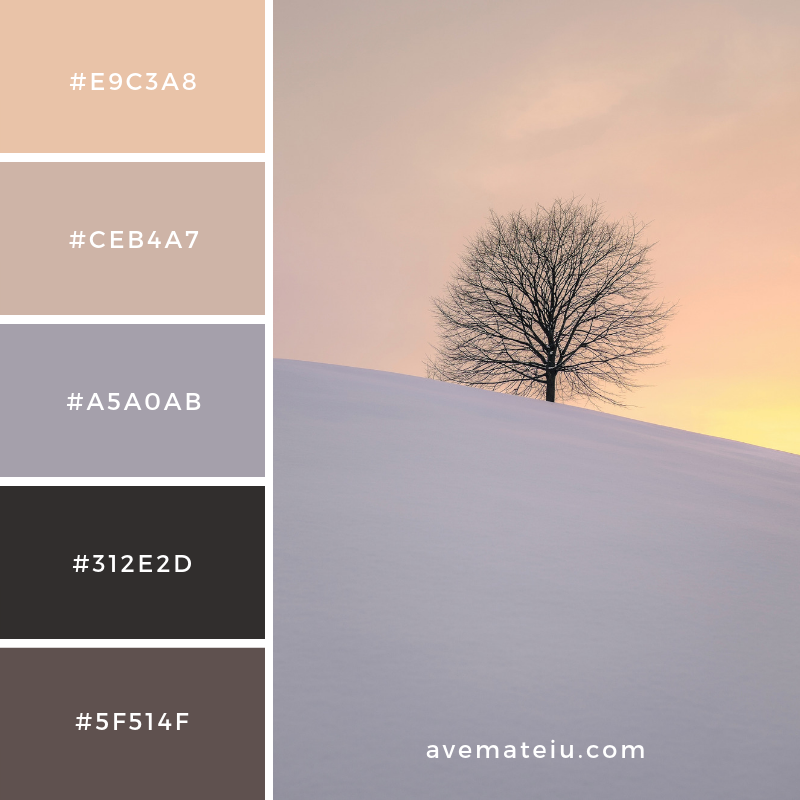 Color Palette #175 Color combination, Color pallets, Color palettes, Color scheme, Color inspiration, Colour Palettes, Art, Inspiration, Vintage, Bright, Blue, Warm, Dark, Design, Yellow, Green, Grey, Red, Purple, Rustic, Fall, Autumn, Winter, Christmas 2019, Nature, Spring, Summer, Flowers, Sunset, Sunrise, Pantone https://avemateiu.com/color-palettes/
