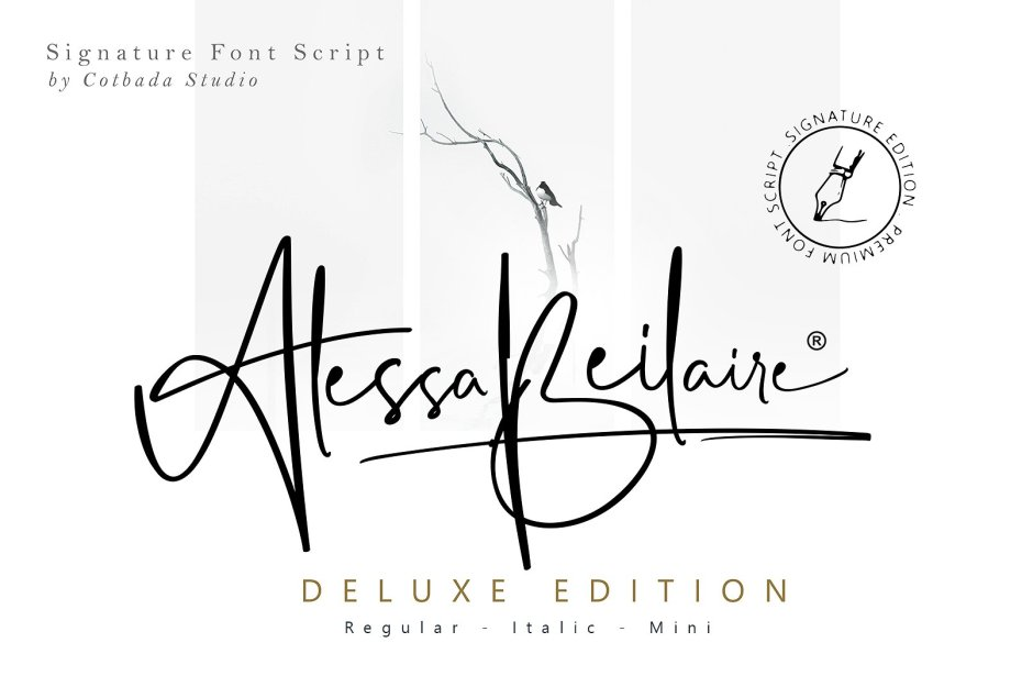 Alessa Beilaire Deluxe Edition Buy Now $18 - Handwritten Fonts, Alphabet Fonts, Free Fonts, Script Fonts, Modern Fonts, Cursive Fonts, Design Fonts, Rustic Fonts, Calligraphy Fonts, Simple Fonts, Typography, Serif Fonts, Elegant Fonts, Professional Fonts, Beautiful Fonts https://avemateiu.com/fonts/