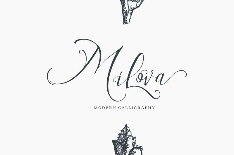 Milova - Modern Calligraphy font Buy Now $16 - Handwritten Fonts, Alphabet Fonts, Free Fonts, Script Fonts, Modern Fonts, Cursive Fonts, Design Fonts, Rustic Fonts, Calligraphy Fonts, Simple Fonts, Typography, Serif Fonts, Elegant Fonts, Professional Fonts, Beautiful Fonts https://avemateiu.com/fonts/