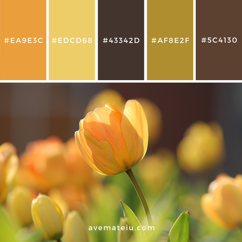 Color Palette #184 Color combination, Color pallets, Color palettes, Color scheme, Color inspiration, Colour Palettes, Art, Inspiration, Vintage, Bright, Blue, Warm, Dark, Design, Yellow, Green, Grey, Red, Purple, Rustic, Fall, Autumn, Winter, Spring 2019, Nature, Spring, Summer, Flowers, Sunset, Sunrise, Pantone https://avemateiu.com/color-palettes/