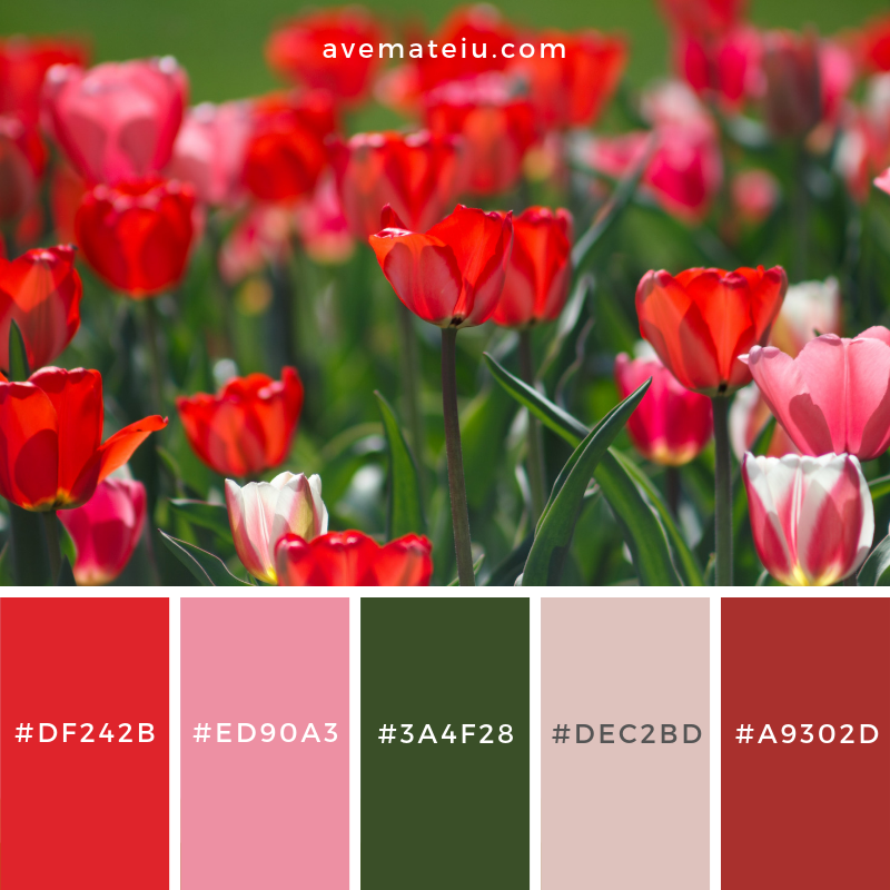 Color Palette #186 Color combination, Color pallets, Color palettes, Color scheme, Color inspiration, Colour Palettes, Art, Inspiration, Vintage, Bright, Blue, Warm, Dark, Design, Yellow, Green, Grey, Red, Purple, Rustic, Fall, Autumn, Winter, Spring 2019, Nature, Spring, Summer, Flowers, Sunset, Sunrise, Pantone https://avemateiu.com/color-palettes