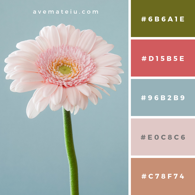 Color Palette #189 Color combination, Color pallets, Color palettes, Color scheme, Color inspiration, Colour Palettes, Art, Inspiration, Vintage, Bright, Blue, Warm, Dark, Design, Yellow, Green, Grey, Red, Purple, Rustic, Fall, Autumn, Winter, Spring 2019, Nature, Spring, Summer, Flowers, Sunset, Sunrise, Pantone https://avemateiu.com/color-palettes/