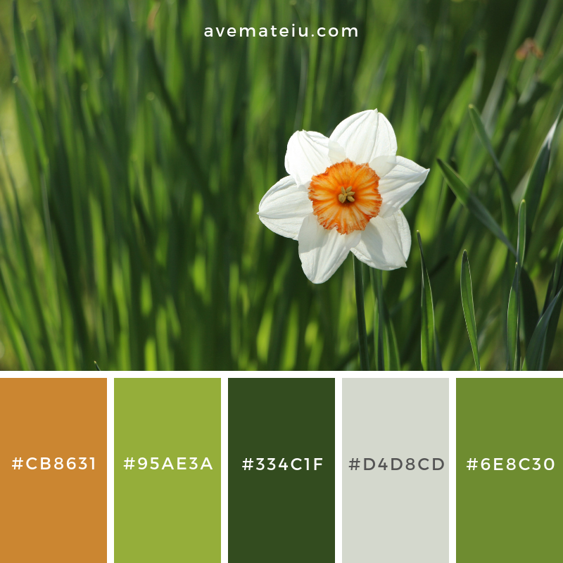 Color Palette #190 Color combination, Color pallets, Color palettes, Color scheme, Color inspiration, Colour Palettes, Art, Inspiration, Vintage, Bright, Blue, Warm, Dark, Design, Yellow, Green, Grey, Red, Purple, Rustic, Fall, Autumn, Winter, Spring 2019, Nature, Spring, Summer, Flowers, Sunset, Sunrise, Pantone https://avemateiu.com/color-palettes/