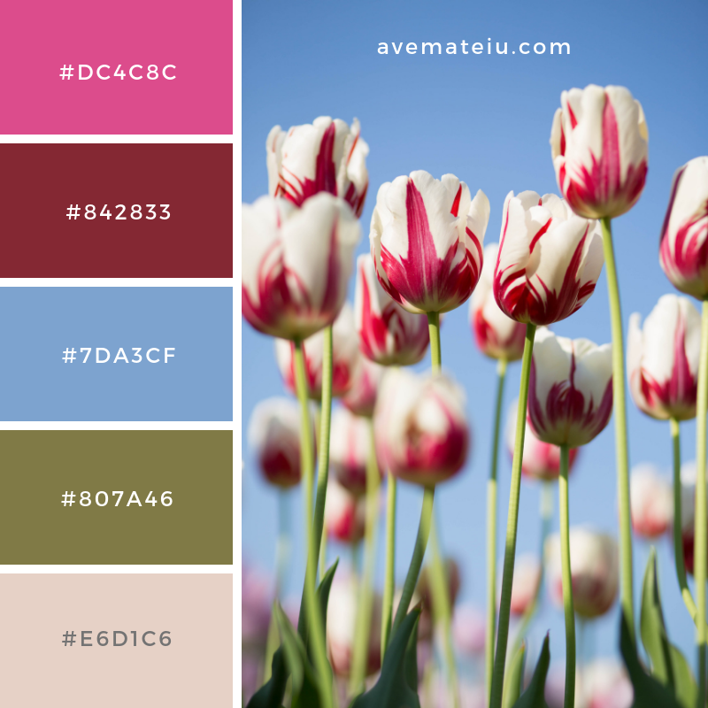 Color Palette #191 Color combination, Color pallets, Color palettes, Color scheme, Color inspiration, Colour Palettes, Art, Inspiration, Vintage, Bright, Blue, Warm, Dark, Design, Yellow, Green, Grey, Red, Purple, Rustic, Fall, Autumn, Winter, Spring 2019, Nature, Spring, Summer, Flowers, Sunset, Sunrise, Pantone https://avemateiu.com/color-palettes/