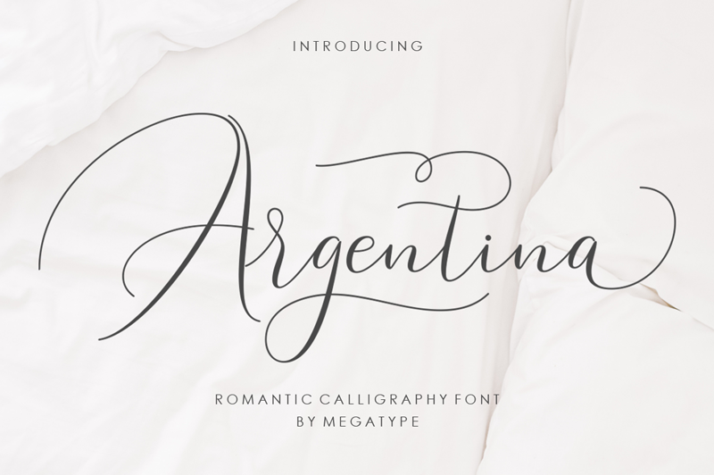 Argentina Script Font - Calligraphy Fonts, Script Fonts, Typography Fonts, Typography Logo, Handwritten Fonts, Handwriting, Hand Lettering Drawing, Diy Projects, Diy Stationery, Diy Event, Paper Crafts, Diy Book, Wedding Stationery, Christmas, Holiday, Logo And Identity Design, Book And Magazine Design, Packaging And Label Design, Modern Font