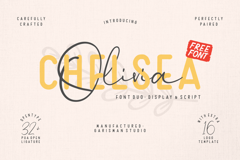 Chelsea Olivia Script Font - Calligraphy Fonts, Script Fonts, Typography Fonts, Typography Logo, Handwritten Fonts, Handwriting, Hand Lettering Drawing, Diy Projects, Diy Stationery, Diy Event, Paper Crafts, Diy Book, Wedding Stationery, Christmas, Holiday, Logo And Identity Design, Book And Magazine Design, Packaging And Label Design, Modern Font