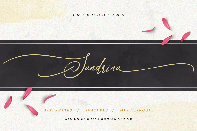 Sandrina Script Font - Calligraphy Fonts, Script Fonts, Typography Fonts, Typography Logo, Handwritten Fonts, Handwriting, Hand Lettering Drawing, Diy Projects, Diy Stationery, Diy Event, Paper Crafts, Diy Book, Wedding Stationery, Christmas, Holiday, Logo And Identity Design, Book And Magazine Design, Packaging And Label Design, Modern Font