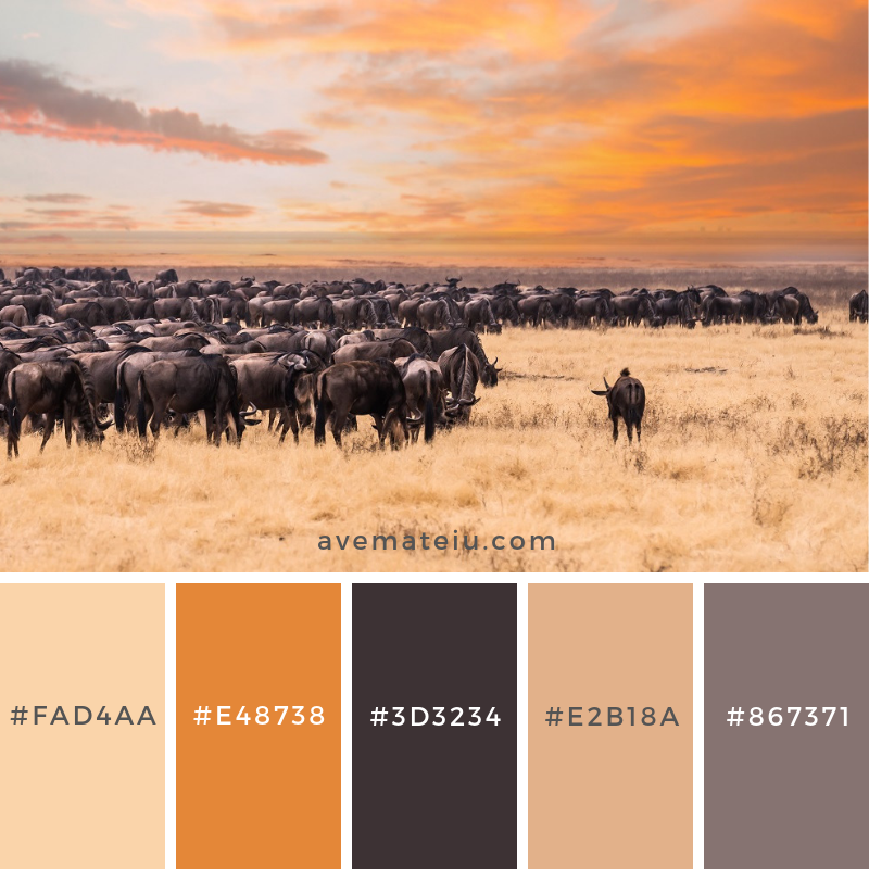 The Wildebeest Migration, Serengeti National Park - Color combination, Color pallets, Color palettes, Color scheme, Color inspiration, Colour Palettes, Art, Inspiration, Vintage, Bright, Blue, Warm, Dark, Design, Yellow, Green, Grey, Red, Purple, Rustic, Fall, Autumn, Winter, Spring 2019, Nature, Spring, Summer, Flowers, Sunset, Sunrise, Pantone