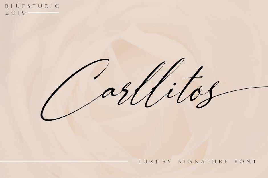 Carllitos - Luxury Signature Font - Check out my list with 10 New Hot Script Fonts for branding your projects in 2019. It is never too late to add charm to your blog! Art, Fonts and Calligraphy, Typography, Handwritten Fonts, Script Fonts, Modern Fonts, Cursive Fonts, Design Fonts, Calligraphy Fonts, Simple Fonts, Elegant Fonts, Professional Fonts, Beautiful Fonts