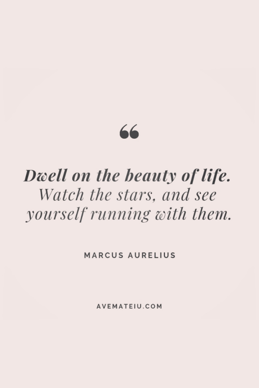 Motivational Quote Of The Day - January 25, 2019 - beautiful words, deep quotes, happiness quotes, inspirational quotes, leadership quote, life quotes, motivational quotes, positive quotes, success quotes, wisdom quotes