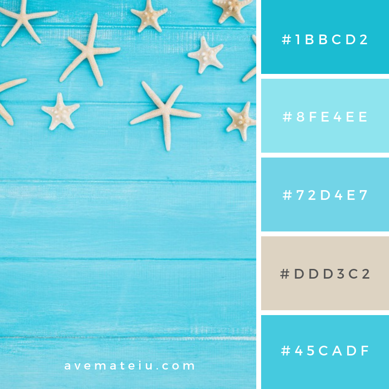 Summer Color Palette #13 - color combination, color inspiration, color palette, color palettes, color scheme, color schemes, design, Fashion, hex codes, pantone summer color palette, summer