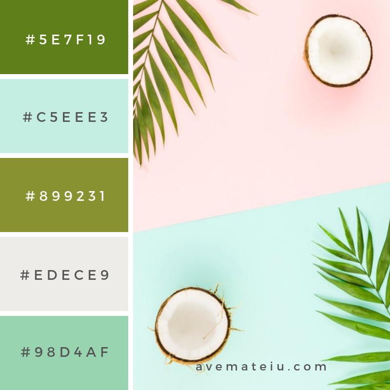 Summer Color Palette #14 - color combination, color inspiration, color palette, color palettes, color scheme, color schemes, design, Fashion, hex codes, pantone summer color palette, summer