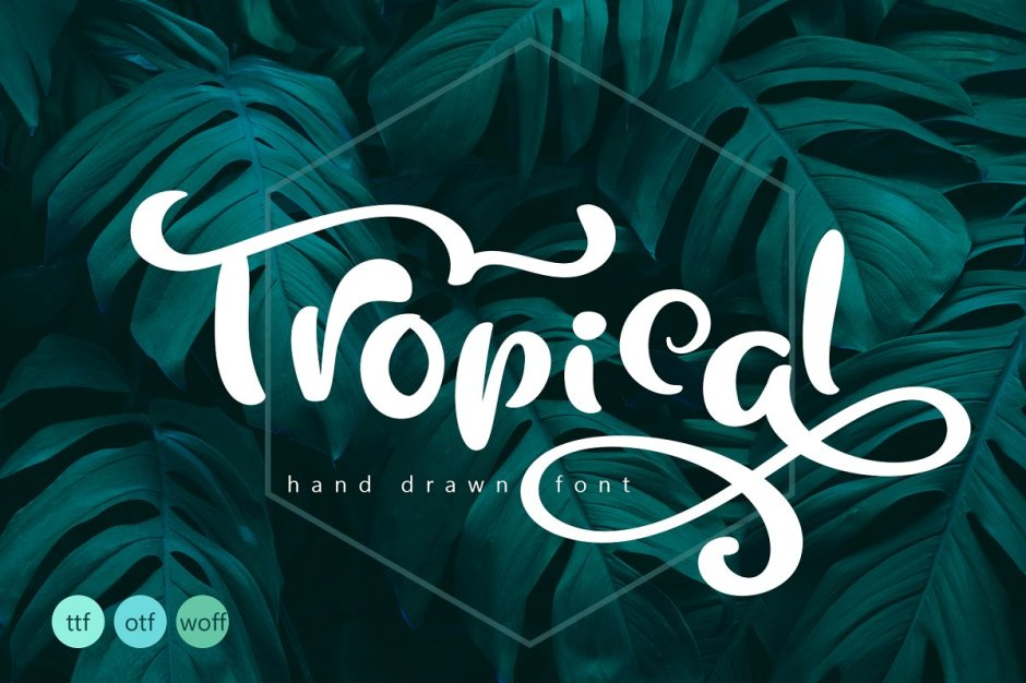 Tropical Summer Font - Art, Fonts and Calligraphy, Typography, Handwritten Fonts, Alphabet Fonts, Free Fonts, Script Fonts, Modern Fonts, Cursive Fonts, Design Fonts, Rustic Fonts, Calligraphy Fonts, Simple Fonts, Serif Fonts, Elegant Fonts, Professional Fonts, Beautiful Fonts