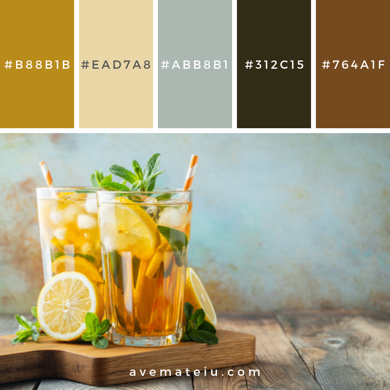 Traditional iced tea with lemon an ice. Color Palette #212 - Color combination, Color pallets, Color palettes, Color scheme, Color inspiration, Colour Palettes, Art, Inspiration, Vintage, Bright, Blue, Warm, Dark, Design, Yellow, Green, Grey, Red, Purple, Rustic, Fall, Autumn, Winter, Spring 2019, Nature, Spring, Summer, Flowers, Sunset, Sunrise, Pantone https://avemateiu.com/color-palettes/