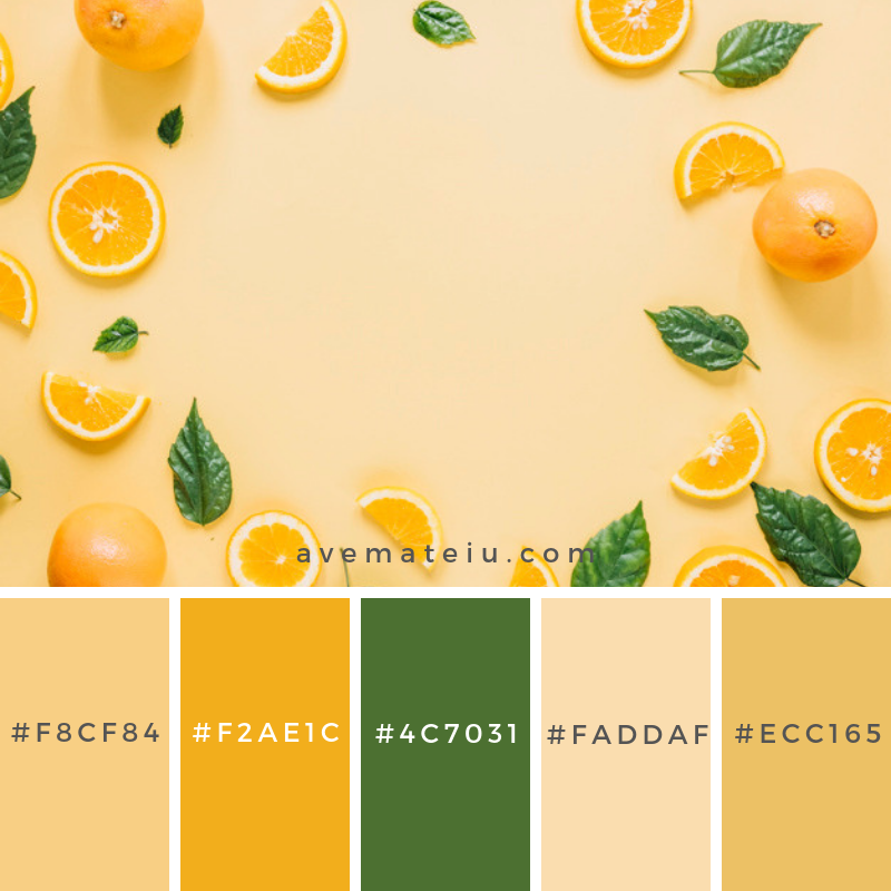 https://avemateiu.com/color-palettes/color-palette-221/ Border from oranges and leaves. Color Palette #222 - Color combination, Color pallets, Color palettes, Color scheme, Color inspiration, Colour Palettes, Art, Inspiration, Vintage, Bright, Blue, Warm, Dark, Design, Yellow, Green, Grey, Red, Purple, Rustic, Fall, Autumn, Winter, Spring 2019, Nature, Spring, Summer, Flowers, Sunset, Sunrise, Pantone https://avemateiu.com/color-palettes/ Flat lay composition with delicious summer cocktail on color. Color Palette #223 - Color combination, Color pallets, Color palettes, Color scheme, Color inspiration, Colour Palettes, Art, Inspiration, Vintage, Bright, Blue, Warm, Dark, Design, Yellow, Green, Grey, Red, Purple, Rustic, Fall, Autumn, Winter, Spring 2019, Nature, Spring, Summer, Flowers, Sunset, Sunrise, Pantone https://avemateiu.com/color-palettes/