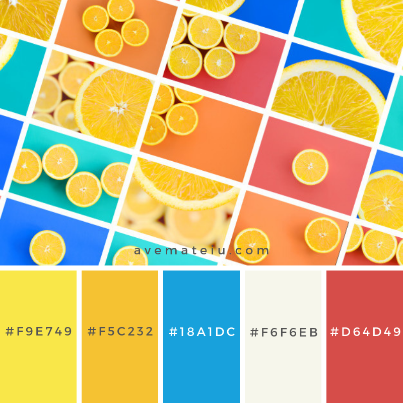 A collage of many pictures with juicy oranges. Color Palette #230 - Color combination, Color pallets, Color palettes, Color scheme, Color inspiration, Colour Palettes, Abstract, Design, Background, Food, Texture, Summer, Blue, Fruit, Orange, Fruits, Tropical, Collage, Flat, Pastel, Mix, Citrus, Oranges, Flat Lay