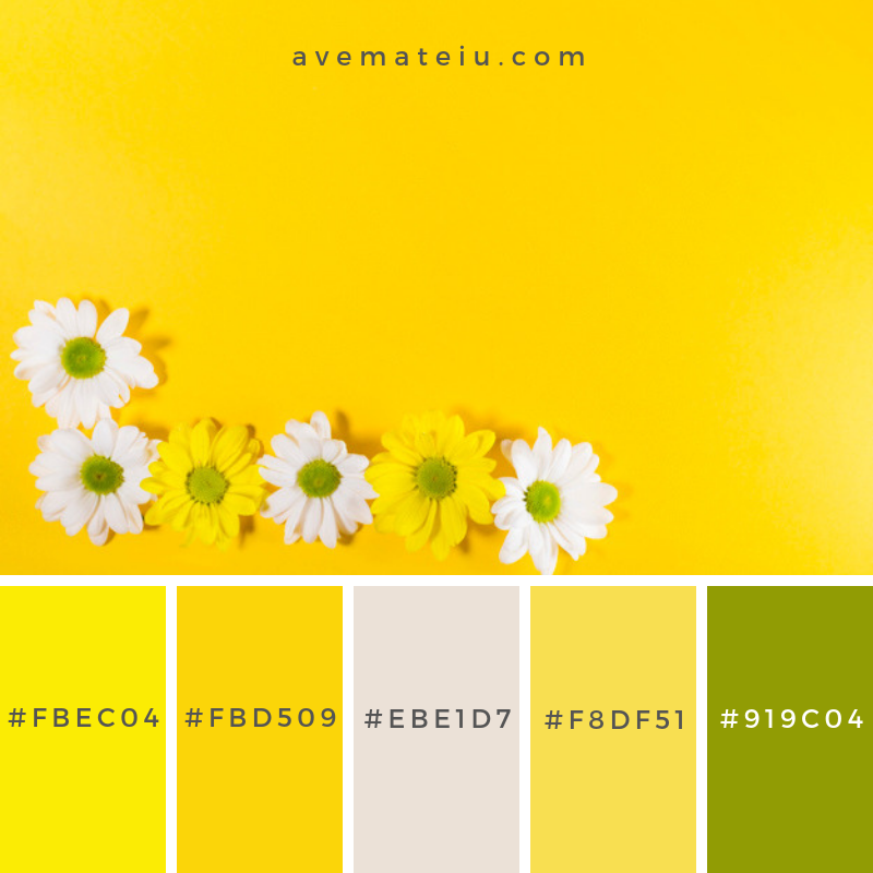 White and yellow blooming flowers. Color Palette #238 - Color combination, Color pallets, Color palettes, Color scheme, Color inspiration, Colour Palettes, Art, Inspiration, Vintage, Bright, Blue, Warm, Dark, Design, Yellow, Green, Grey, Red, Purple, Rustic, Fall, Autumn, Winter, Spring 2019, Nature, Spring, Summer, Flowers, Sunset, Sunrise, Pantone https://avemateiu.com/color-palettes/