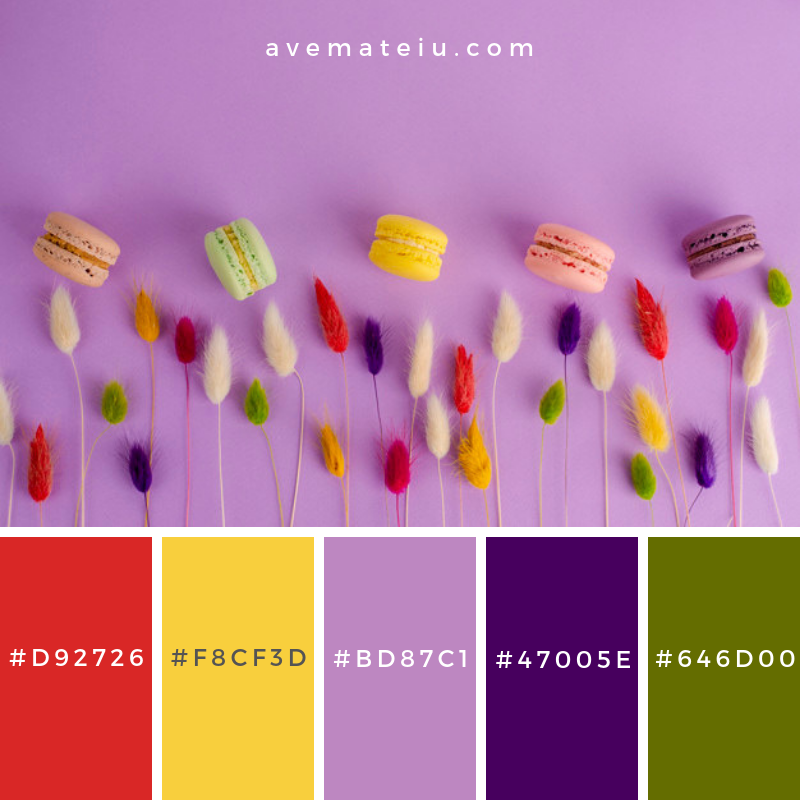 Sweet french macaroons and decorative colorful spikelets on bright purple, lat lay, copy space Color Palette #254 - Color combination, Color pallets, Color palettes, Color scheme, Color inspiration, Colour Palettes, Art, Inspiration, Vintage, Bright, Blue, Warm, Dark, Design, Yellow, Green, Grey, Red, Purple, Rustic, Fall, Autumn, Winter, Summer 2019, Nature, Spring, Summer, Flowers, Sunset, Sunrise, Pantone https://avemateiu.com/color-palettes/