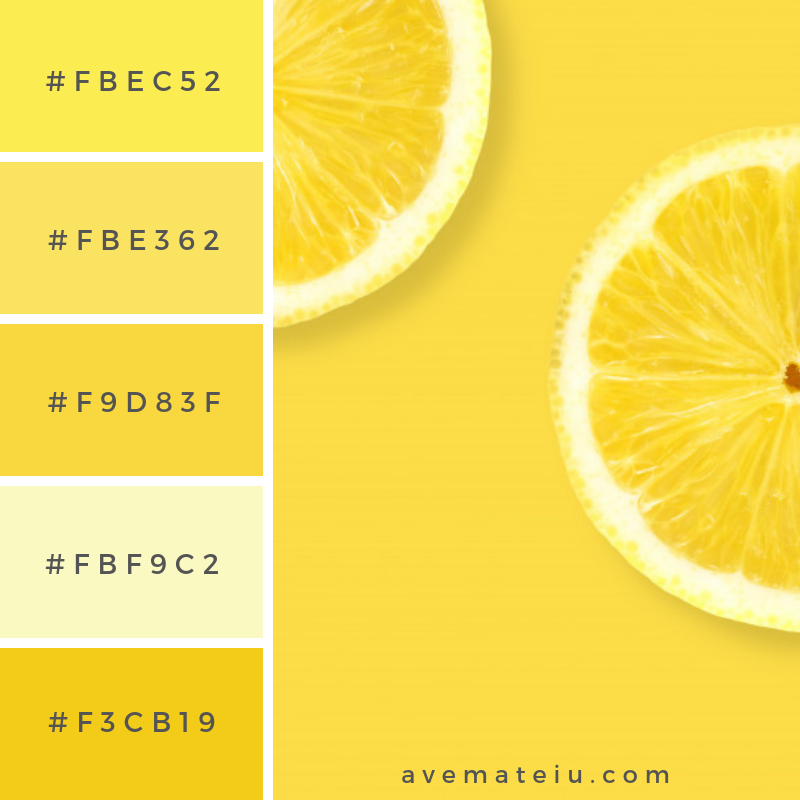 Layout the lemon on a yellow background Color Palette #255 - Color combination, Color pallets, Color palettes, Color scheme, Color inspiration, Colour Palettes, Art, Inspiration, Vintage, Bright, Blue, Warm, Dark, Design, Yellow, Green, Grey, Red, Purple, Rustic, Fall, Autumn, Winter, Summer 2019, Nature, Spring, Summer, Flowers, Sunset, Sunrise, Pantone https://avemateiu.com/color-palettes/