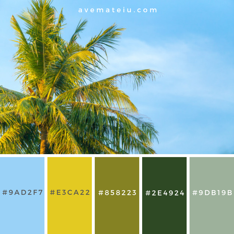 Top of coconut tree Color Palette #258 - Color combination, Color pallets, Color palettes, Color scheme, Color inspiration, Colour Palettes, Art, Inspiration, Vintage, Bright, Blue, Warm, Dark, Design, Yellow, Green, Grey, Red, Purple, Rustic, Fall, Autumn, Winter, Summer 2019, Nature, Spring, Summer, Flowers, Sunset, Sunrise, Pantone https://avemateiu.com/color-palettes/