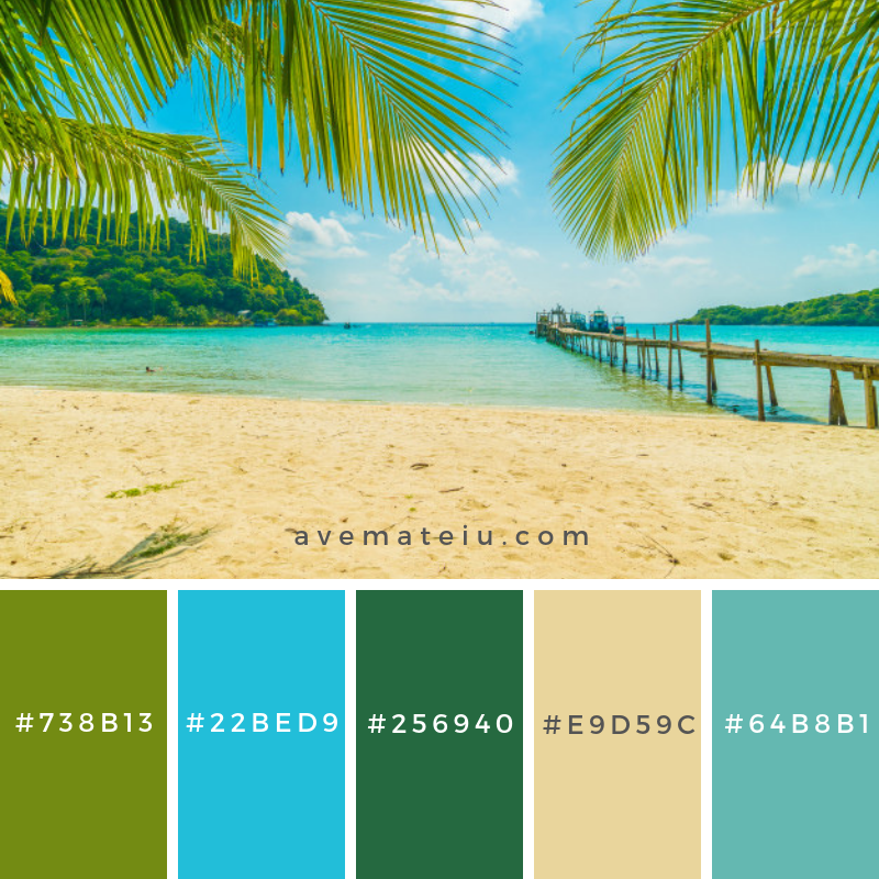 Beautiful tropical beach and sea with coconut palm tree in paradise island Color Palette #266 - Color combination, Color pallets, Color palettes, Color scheme, Color inspiration, Colour Palettes, Art, Inspiration, Vintage, Bright, Blue, Warm, Dark, Design, Yellow, Green, Grey, Red, Purple, Rustic, Fall, Autumn, Winter, Summer 2019, Nature, Spring, Summer, Flowers, Sunset, Sunrise, Pantone https://avemateiu.com/color-palettes/