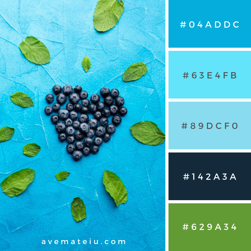 Flat-lay heart shaped currants with leaves Color Palette #269 - Color combination, Color pallets, Color palettes, Color scheme, Color inspiration, Colour Palettes, Art, Inspiration, Vintage, Bright, Blue, Warm, Dark, Design, Yellow, Green, Grey, Red, Purple, Rustic, Fall, Autumn, Winter, Summer 2019, Nature, Spring, Summer, Flowers, Sunset, Sunrise, Pantone https://avemateiu.com/color-palettes/