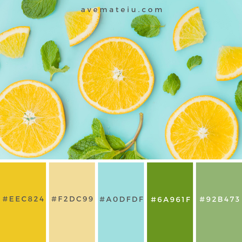 Sliced orange and mint leaves pattern Color Palette #270 - Color combination, Color pallets, Color palettes, Color scheme, Color inspiration, Colour Palettes, Art, Inspiration, Vintage, Bright, Blue, Warm, Dark, Design, Yellow, Green, Grey, Red, Purple, Rustic, Fall, Autumn, Winter, Summer 2019, Nature, Spring, Summer, Flowers, Sunset, Sunrise, Pantone https://avemateiu.com/color-palettes/