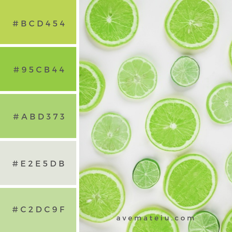 Green slices of citruses Color Palette #271 - Color combination, Color pallets, Color palettes, Color scheme, Color inspiration, Colour Palettes, Art, Inspiration, Vintage, Bright, Blue, Warm, Dark, Design, Yellow, Green, Grey, Red, Purple, Rustic, Fall, Autumn, Winter, Summer 2019, Nature, Spring, Summer, Flowers, Sunset, Sunrise, Pantone https://avemateiu.com/color-palettes/