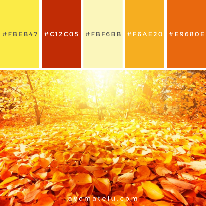 Autumn scenery Color Palette #300 - Color combination, Color pallets, Color palettes, Color scheme, Color inspiration, Colour Palettes, Art, Inspiration, Vintage, Bright, Blue, Warm, Dark, Design, Yellow, Green, Grey, Red, Purple, Rustic, Fall, Autumn, Winter, Summer 2019, Nature, Spring, Summer, Flowers, Sunset, Sunrise, Pantone https://avemateiu.com/color-palettes/