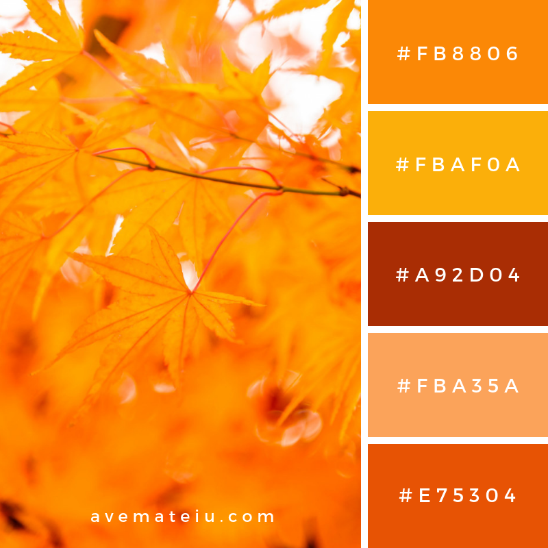 Maple leaf Color Palette #301 - Color combination, Color pallets, Color palettes, Color scheme, Color inspiration, Colour Palettes, Art, Inspiration, Vintage, Bright, Blue, Warm, Dark, Design, Yellow, Green, Grey, Red, Purple, Rustic, Fall, Autumn, Winter, Summer 2019, Nature, Spring, Summer, Flowers, Sunset, Sunrise, Pantone https://avemateiu.com/color-palettes/