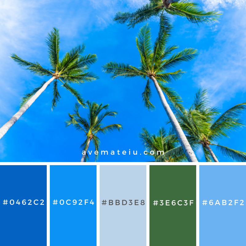 Beautiful coconut palm tree on blue sky Color Palette #302 - Color combination, Color pallets, Color palettes, Color scheme, Color inspiration, Colour Palettes, Art, Inspiration, Vintage, Bright, Blue, Warm, Dark, Design, Yellow, Green, Grey, Red, Purple, Rustic, Fall, Autumn, Winter, Summer 2019, Nature, Spring, Summer, Flowers, Sunset, Sunrise, Pantone https://avemateiu.com/color-palettes/