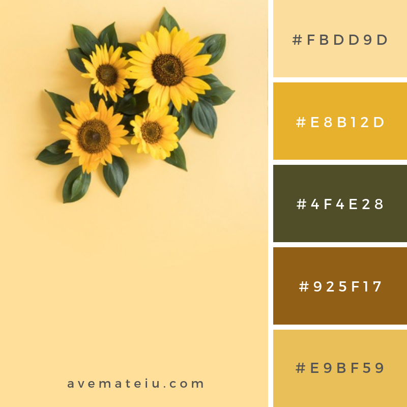 High angle view of beautiful sunflower on yellow surface Color Palette #305 - Color combination, Color pallets, Color palettes, Color scheme, Color inspiration, Colour Palettes, Art, Inspiration, Vintage, Bright, Blue, Warm, Dark, Design, Yellow, Green, Grey, Red, Purple, Rustic, Fall, Autumn, Winter, Summer 2019, Nature, Spring, Summer, Flowers, Sunset, Sunrise, Pantone https://avemateiu.com/color-palettes/