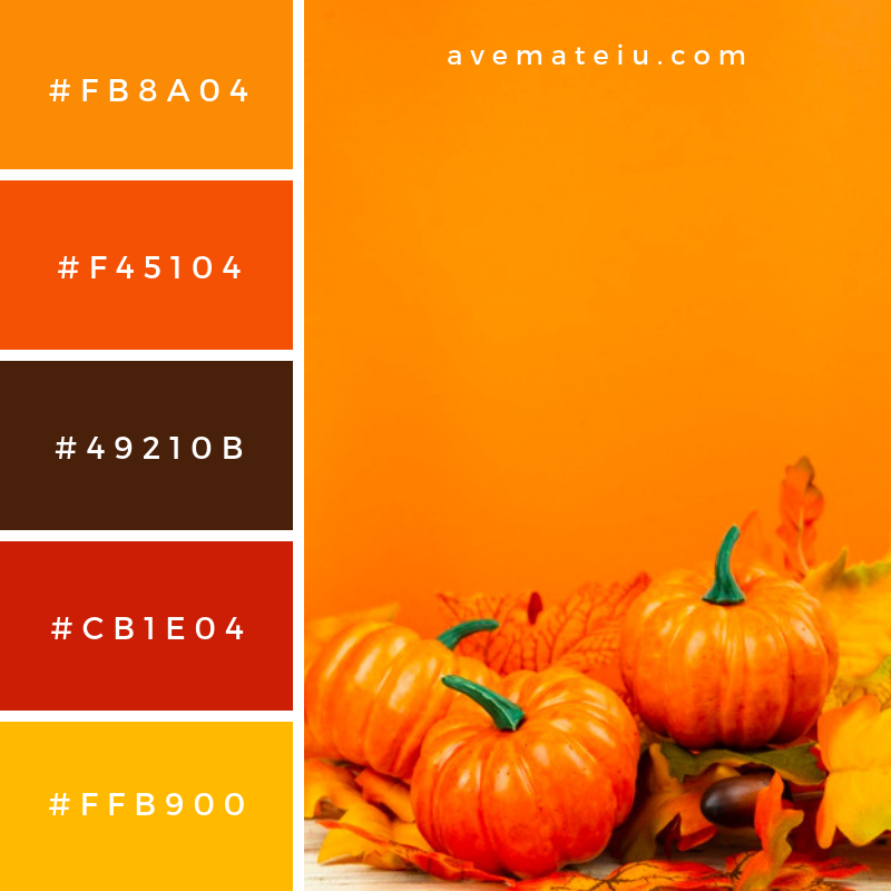 Front view pumpkins with orange background Color Palette #307 - Color combination, Color pallets, Color palettes, Color scheme, Color inspiration, Colour Palettes, Art, Inspiration, Vintage, Bright, Blue, Warm, Dark, Design, Yellow, Green, Grey, Red, Purple, Rustic, Fall, Autumn, Winter, Summer 2019, Nature, Spring, Summer, Flowers, Sunset, Sunrise, Pantone https://avemateiu.com/color-palettes/