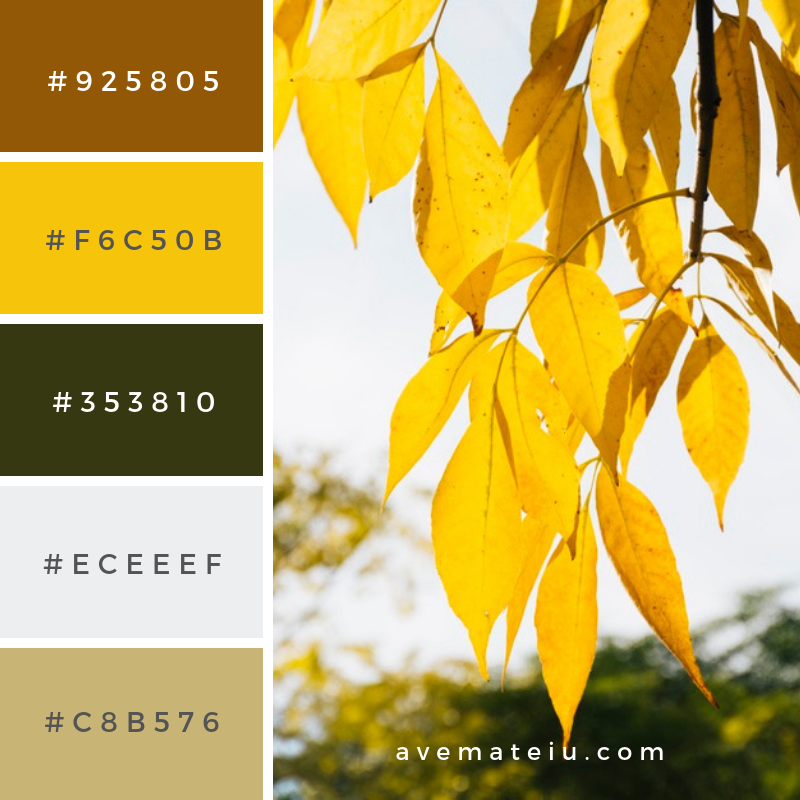 Golden autumn leaves with blurred background Color Palette #311 - Color combination, Color pallets, Color palettes, Color scheme, Color inspiration, Colour Palettes, Art, Inspiration, Vintage, Bright, Blue, Warm, Dark, Design, Yellow, Green, Grey, Red, Purple, Rustic, Fall, Autumn, Winter, Summer 2019, Nature, Spring, Summer, Flowers, Sunset, Sunrise, Pantone https://avemateiu.com/color-palettes/