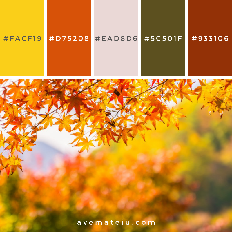 Beautiful red and green maple leaf on tree Color Palette #316 - Color combination, Color pallets, Color palettes, Color scheme, Color inspiration, Colour Palettes, Art, Inspiration, Vintage, Bright, Blue, Warm, Dark, Design, Yellow, Green, Grey, Red, Purple, Rustic, Fall, Autumn, Winter, Summer 2019, Nature, Spring, Summer, Flowers, Sunset, Sunrise, Pantone https://avemateiu.com/color-palettes/